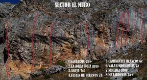 sector muro (2)