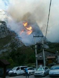 fuego2(44)