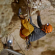 Video de Chris Sharma y Stefan Glowacz en su Mega proyecto